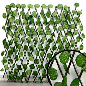 Wonder Fencing Malus Leaf